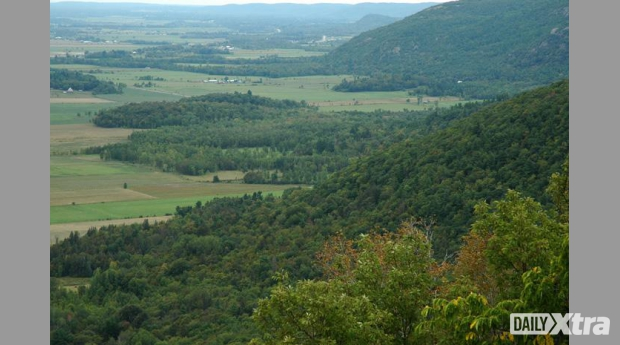 A view of Gatineau Park.